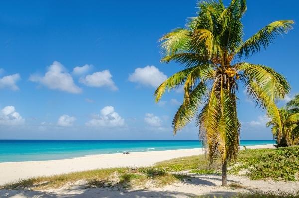 Flug Montego Bay Cayman Island